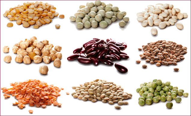 Hülsenfrüchte - eiweißreiche Lebensmittel | tegut...